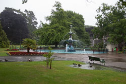 Christchurch_Botanic_Gardens-009.jpg