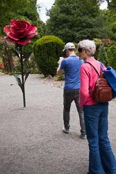 Christchurch_Botanic_Gardens-057.jpg
