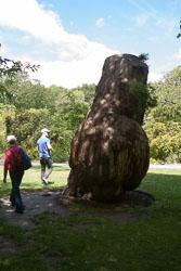 Christchurch_Botanic_Gardens-105.jpg