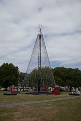 Christchurch_Christmas_Tree-001.jpg