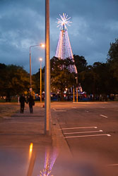 Christchurch_Christmas_Tree-003.jpg