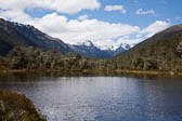 Lewis Pass, Nature Walk 001