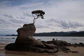 Tin Line Bay 022