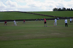 Giants_Cricket_Day_2013_-027.jpg