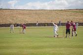 Giants-Cricket-Day,-2014--201