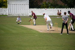 2016_Cricket_-_Family_Fun_Day-066.jpg