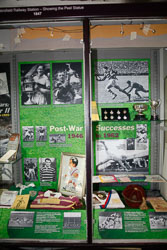 Heritage_Project_Exhibition-017.jpg