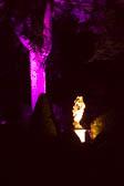 Enchanted_Brodsworth-042