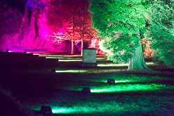 Enchanted_Brodsworth-106.jpg