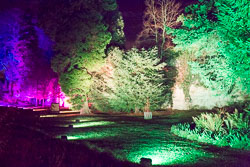 Enchanted_Brodsworth-107.jpg