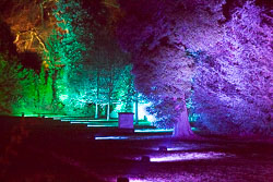 Enchanted_Brodsworth-109.jpg
