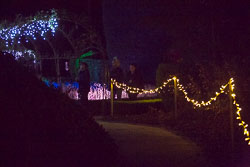 Enchanted_Brodsworth-114.jpg