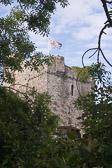 Manorbier_Castle_-004