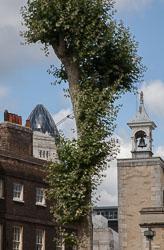 Tower_Of_London_-005.jpg