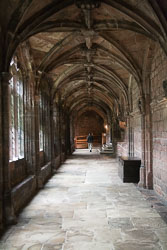 Chester_Cathedral_-004.jpg