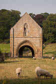 Easby_Abbey-030