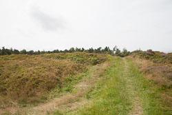 Cawthorn-Roman-Camp--021.jpg