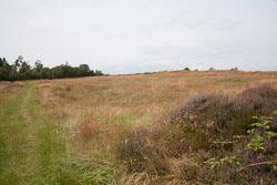 Cawthorn-Roman-Camp--023.jpg