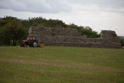 Gariannonum,-Burgh-Castle-Roman-Fort-013.jpg