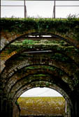Underneath_The_Arches-002