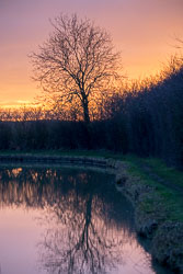2018_Christmas_Cruise,_South_Oxford_Canal-091.jpg