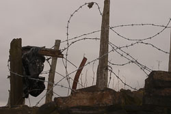 Barbed_Wire-001.jpg
