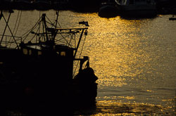 Bridlington_Harbour_At_Sunset-001.jpg