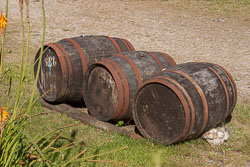 Cider_Barrel_N06-004.jpg