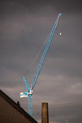 Crane_-001.jpg