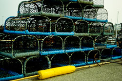 Lobster_Pots-002.jpg