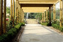 Pathway-001.jpg