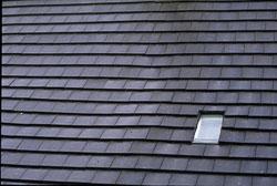 Roof-004.jpg