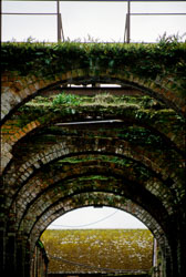 Underneath_The_Arches-002.jpg
