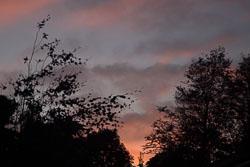Sunset-003.jpg