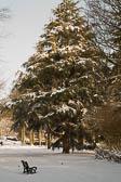 Beaumont Park _166