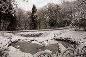 Snow, Beaumont Park -102