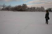 Snow, Delves Wood -012