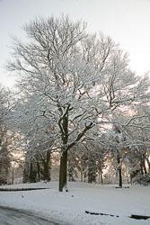 Beaumont_Park__112.jpg