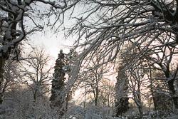 Beaumont_Park__115.jpg
