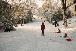 Beaumont_Park__158.jpg