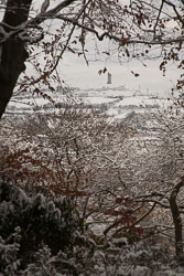 Snow,_Beaumont_Park_-104.jpg