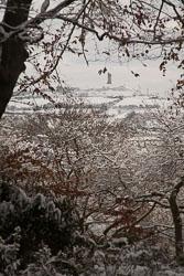 Snow,_Beaumont_Park_-104.jpg
