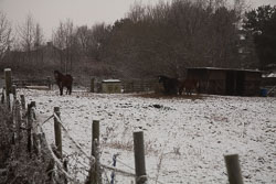 Snow,_Crosland_Hill_-002.jpg