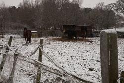 Snow,_Crosland_Hill_-003.jpg