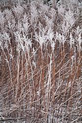 Snow,_Crosland_Hill_-004.jpg