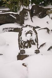 Snow,_March_2013_-028.jpg