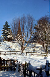 St_John's_Church,_Golcar,_Snow_001.jpg
