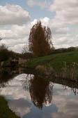 Huddersfield Narrow Canal -014