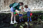 Family,_Rock_Pool,_Bridlington_010.jpg