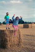 Leverton,_Lincolnshire,_H-B,_Hay_Bale_007.jpg